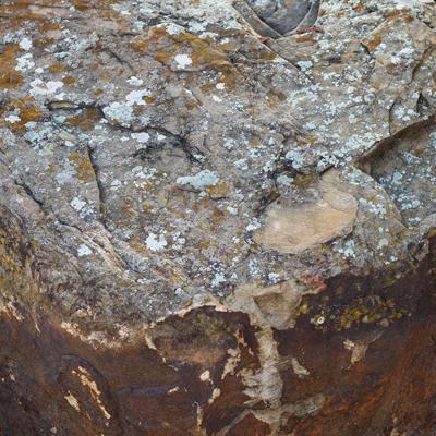 Moss Boulder Image